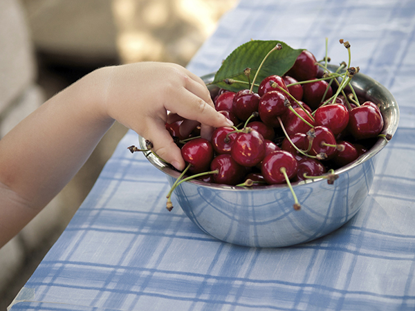 Child reaching for healthy cherries - Breaking Your Gradeschooler's Unhealthy Food Habit