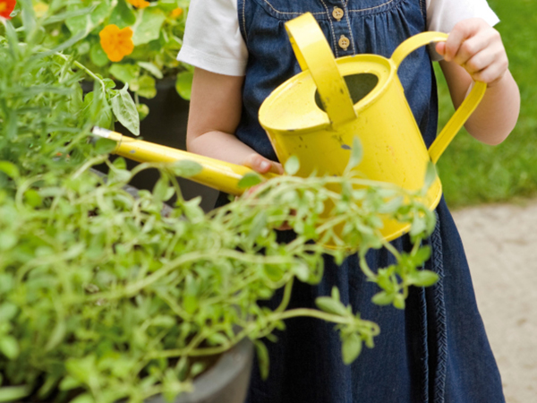 Start a Container Garden with Your Family