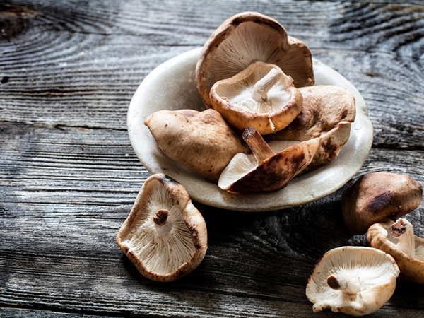 Shiitake Mushrooms for Hot and Sour Szechuan Soup