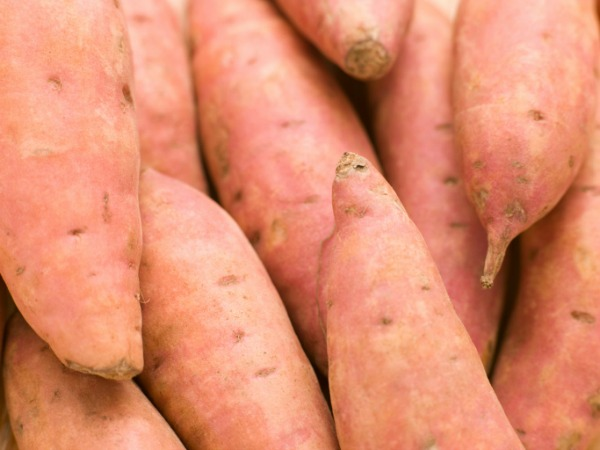 Sweet potatoes for Hanukkah Sweet Potato Latkes