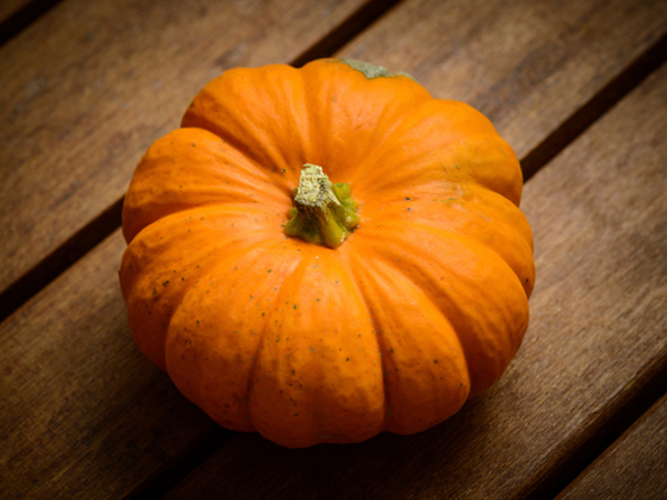 Pumpkin for Pumpkin Pie Dip