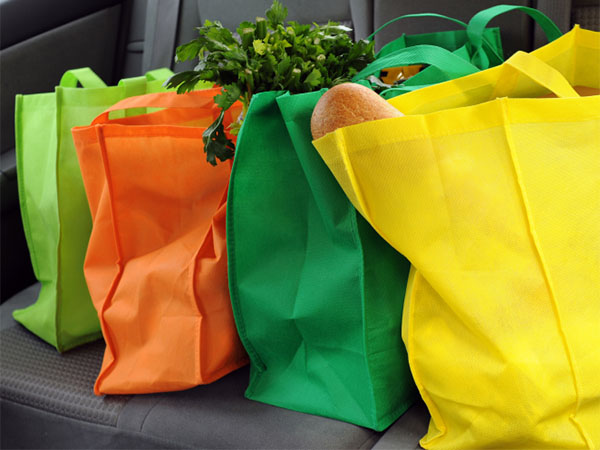 reusable grocery bags on seat of car
